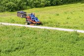 Sunny Summer Day.mature Man Driving Grass Cutter In A Sunny Gardener Driving A Riding Lawn Mower In poster