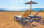 Sandy beach with parasol and chaise longues by the sea on sunny summer day poster