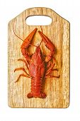 stock photo of craw  - the red lobster on a cutting board - JPG