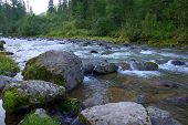 Stone Boulders On The Bank Of A Mountainous Turbulent River Flowing Through The Summer Morning Fores poster