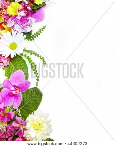 Floral greeting card with beautiful flowers. Isolated on white background.