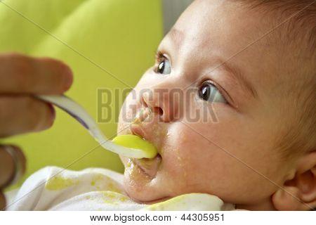 First feeding up
