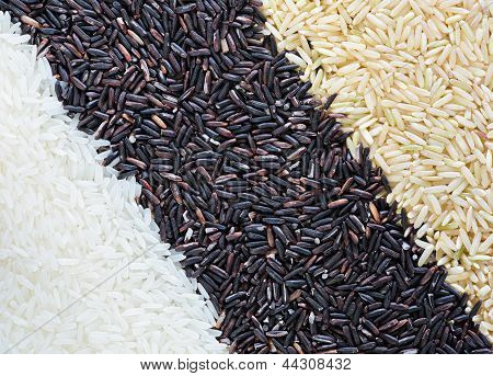 Rice Grain background