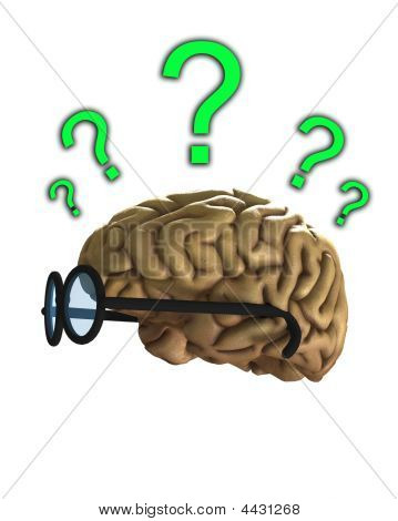 Confused Clever Brain
