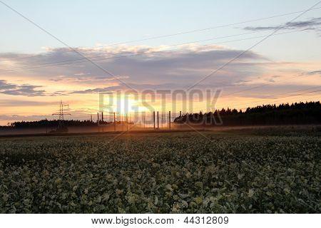 eléctrica puesta del sol