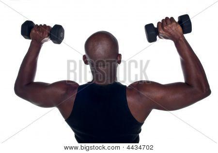 Training Back