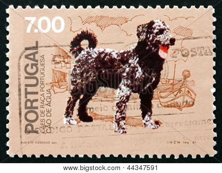 Postage Stamp Portugal 1981 Cao De Agua, Breed Of Dog From Portu