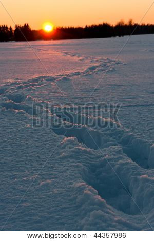 Sunset Behind Snow Field