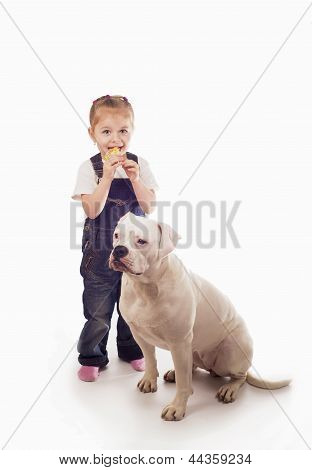 Little girl eats candy with white dog