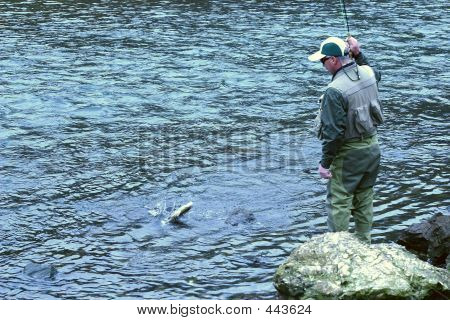 Fly Fishing 12