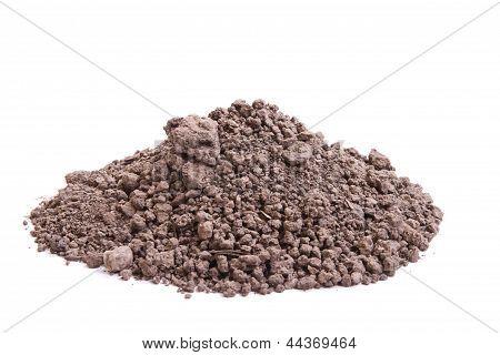 Soil For Seedling