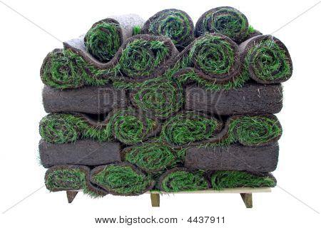 Pile Of Grass Rolls
