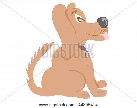 brown dog sitting sideways smiling