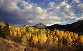 pic of rocky-mountains  - a panoramic image of mount sneffels with aspen trees in the foreground located in the uncompahgre national forest of colorado - JPG