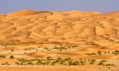 stock photo of oman  - A wadi in the Rub al Khali or Empty Quarter - JPG
