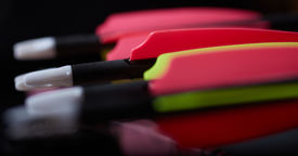 pic of fletching  - The back fletches of standard compound archery bow arrows - JPG