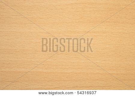 Tauern Beech Wooden Texture