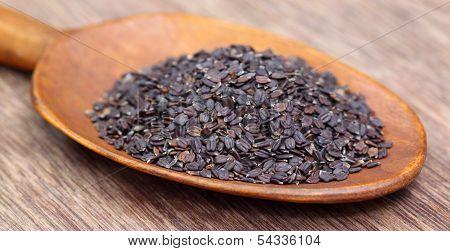 Medicinal Basil Seeds