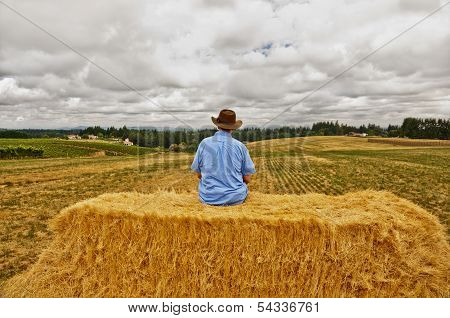 Man with cowboy hat sitting on bale of hay