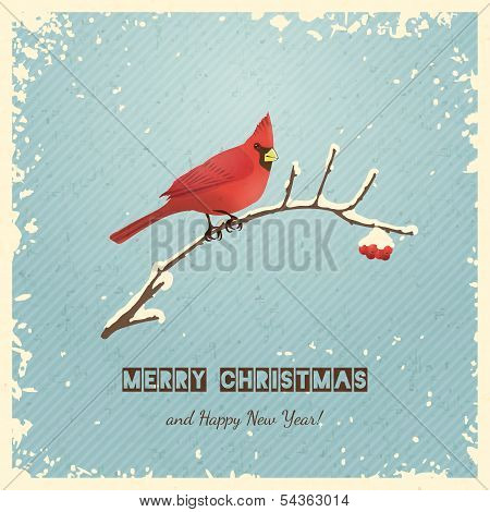 Christmas Greeting Card with Bird