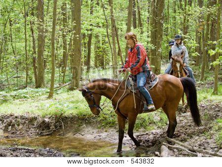 Ciclistas de pista forestal