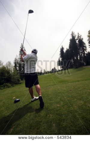 Nice Swing