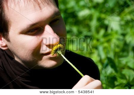 portrait of a young man sniffs a dandelion on the nature