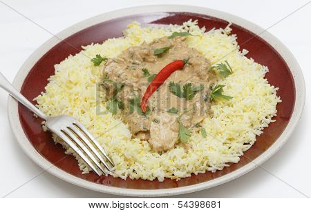 Balti chicken pasanda curry served on a bed of saffron rice, garnished with coriander leaves and a red chilli.