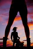 stock photo of western saddle  - A silhouette of a woman - JPG