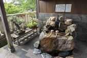 stock photo of bonsai  - Purification ladles and bonsai trees in the Kanazawa old town Japan - JPG