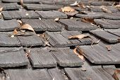image of shingles  - Weathered Roof-top. Detailed view of roof shingles.