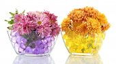 Beautiful flowers in vases with hydrogel isolated on white poster