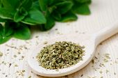 stock photo of oregano  - Dried Oregano Leaves On Wooden Spoon With A Fresh Oregano In The Back  - JPG