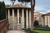 picture of hercules  - the temple of Hercules aka Vesta in Rome Italy - JPG