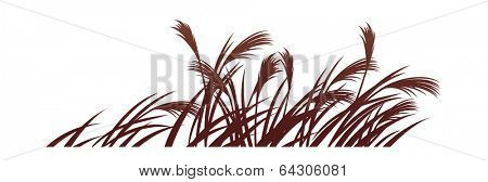 vector icon reed