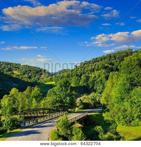 Going To Nature Throug The Bridge