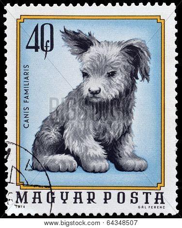 Hungary stamp 1974