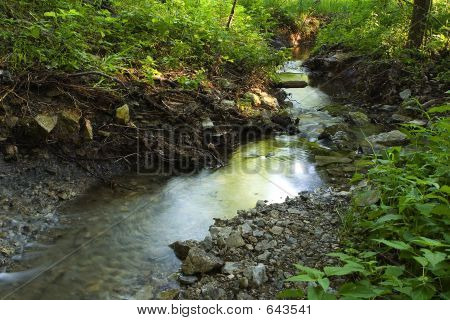 Peaceful Winding Stream