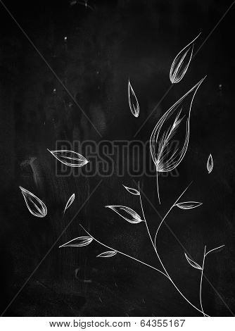 leaves ornament sketch on blackboard
