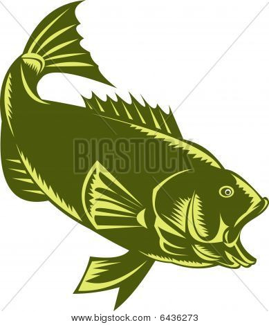 Largemouth Bass woodcut style