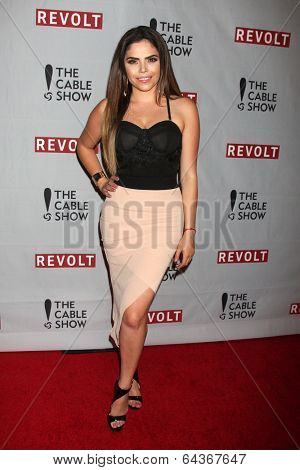 LOS ANGELES - APR 30:  Yarel Ramos at the NCTA's Chairman's Gala Celebration of Cable with REVOLT at The Belasco Theater on April 30, 2014 in Los Angeles, CA