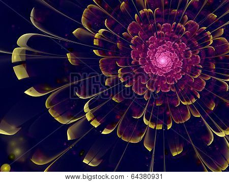 Violet Fractal Flower With Yellow Details On Petals, On Black