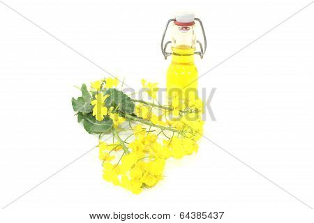 Rapeseed Oil With Rapeseed