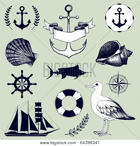 Vector set of decorative sea elements