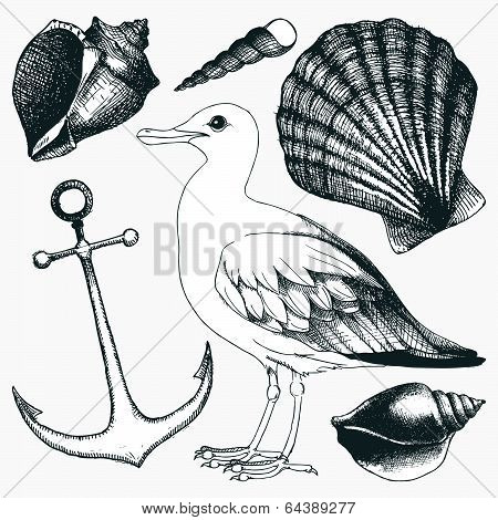 Vector collection of hand drawn sea illustrations