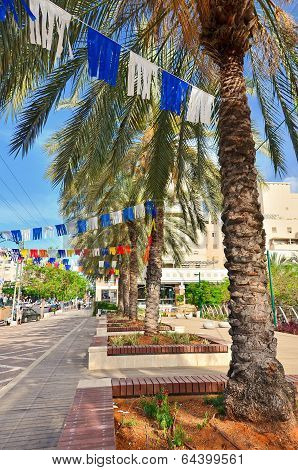 Israel Steet On Independence Day