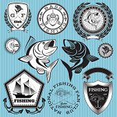 foto of catfish  - set of vector emblems on the topic fishing - JPG