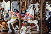 stock photo of carousel horse  - a vintage carousel in a fish - JPG