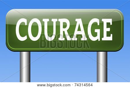 courageous, courage and bravery the ability to confront fear pain danger uncertainty and intimidation fearless