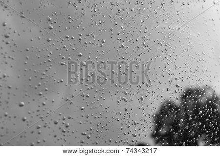Window Raindrops - Stock Image